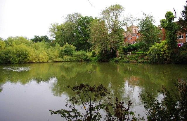 Donington Pool, Donington