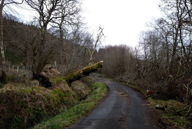 Storm damage in Appin