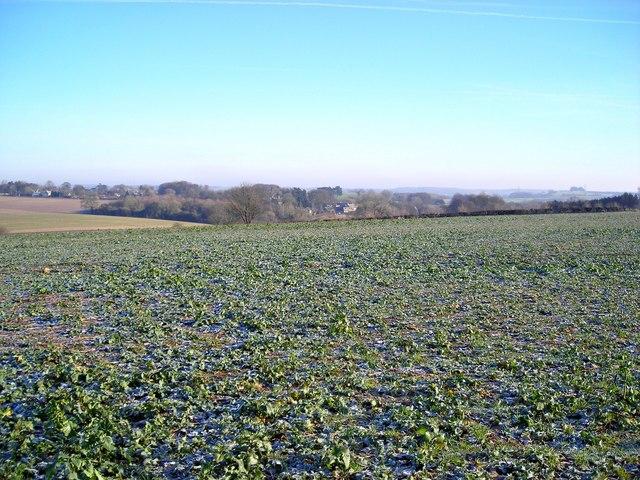 Fields near Elkstone