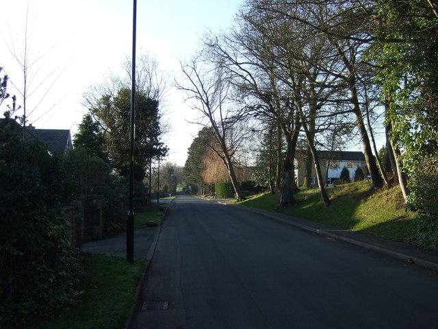 Stone Rings Lane