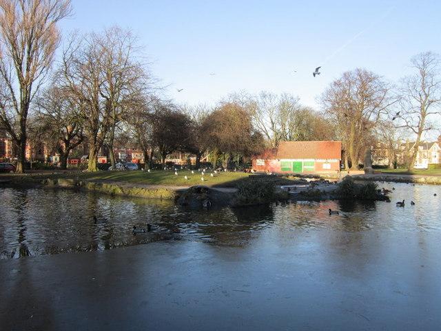 Pearson's Park lake, Hull