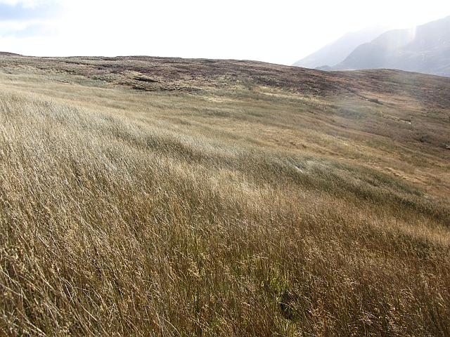 Wet ground, Crogan