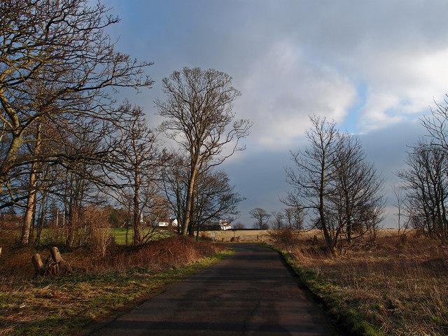Isle of Pin Road