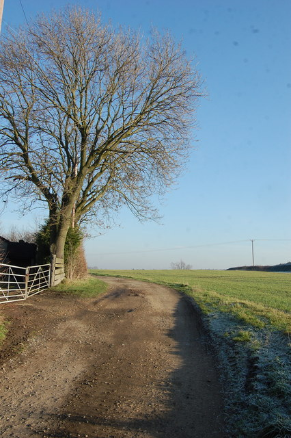 Lane to the Dales