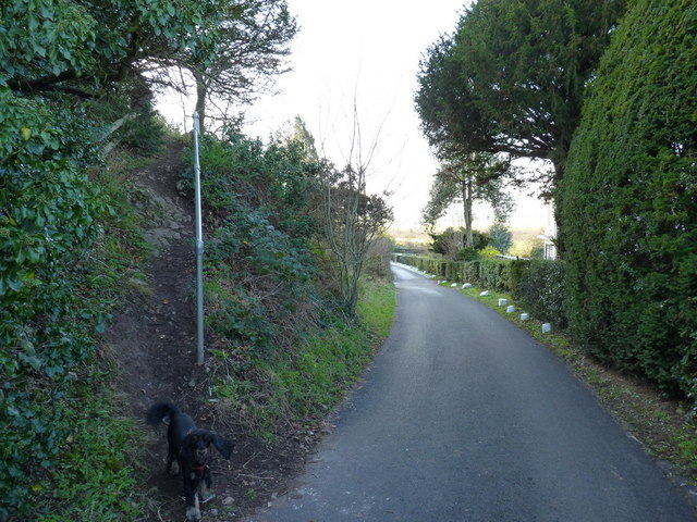 The bottom of the path from the hill