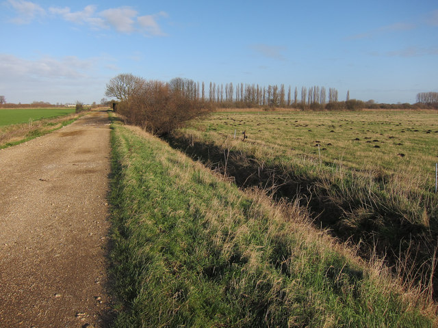 Bridleway from New Farm to New Farm