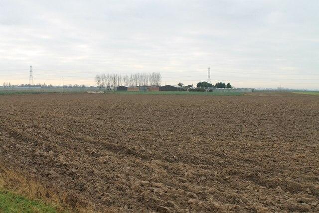 Fields towards New Farm