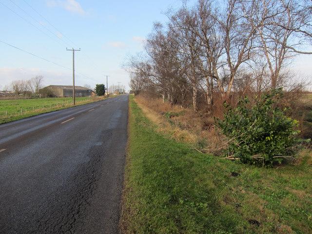 Jubilee Farm, Southery Road