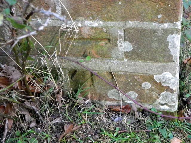 Bench Mark, Moyles Court