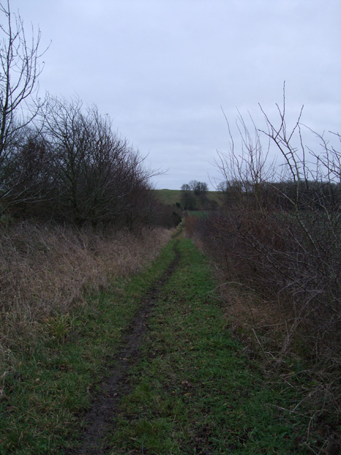Bridlepath leading to Windmill Hill