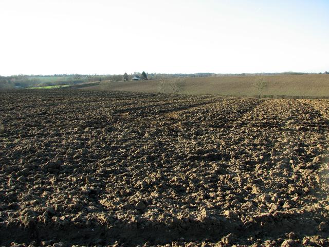 Undulating fields west of Easton