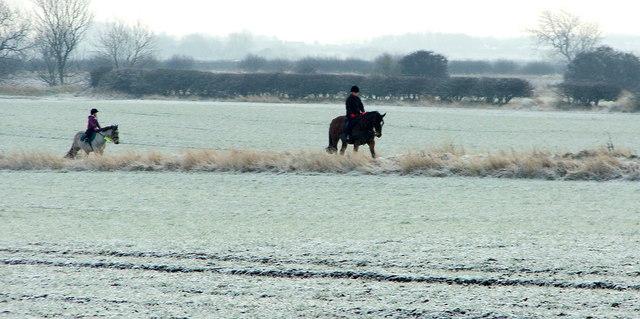 Horse Riders, Holywell Dene