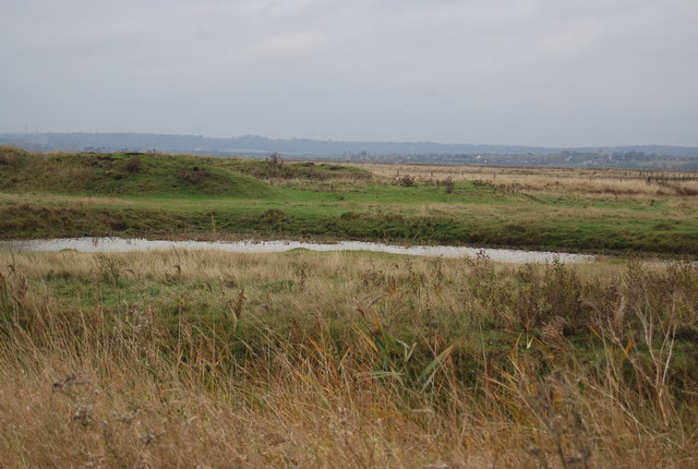 Pond, Cliffe Marshes