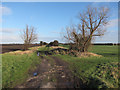 TL6990 : Bridleway across Feltwell Common by Hugh Venables