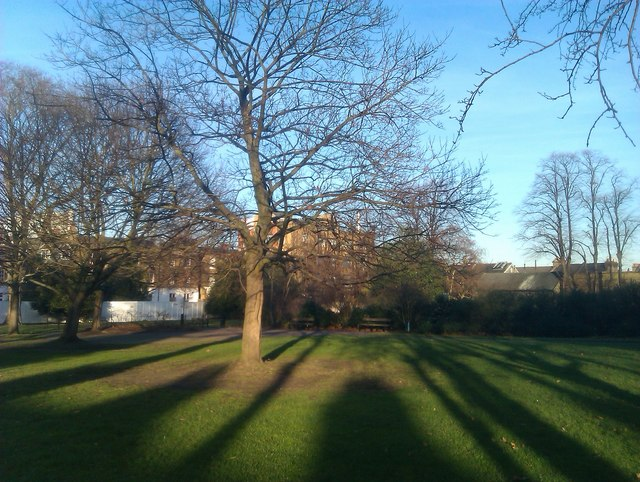 Long shadows, Lucas Gardens
