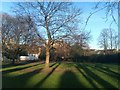TQ3376 : Long shadows, Lucas Gardens by David Martin