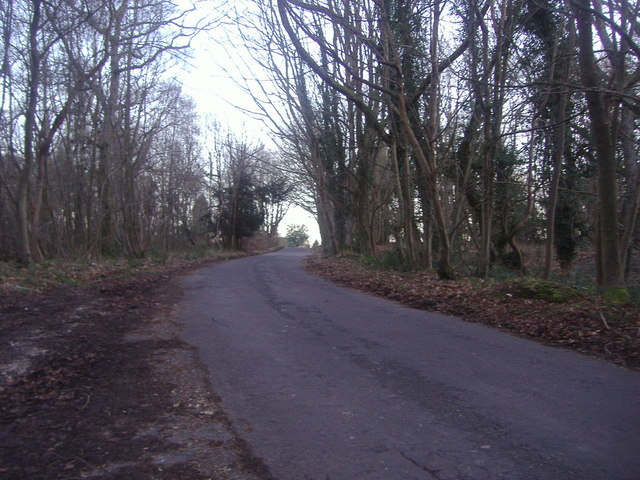 Ranmore Common Road near Westhumble