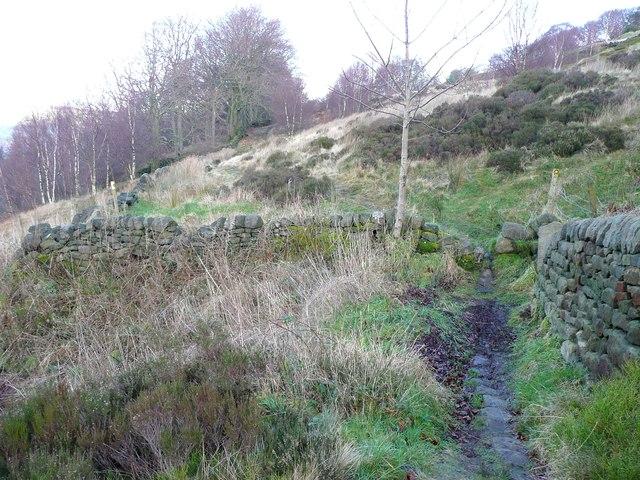 The Calderdale Way (Hebden Royd FP115) below Plod Well