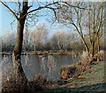 SK4669 : Frosty morning by the fishing lake by Andrew Hill