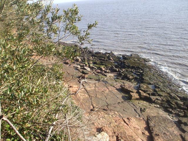 Rocky beach, St Mary's Well Bay