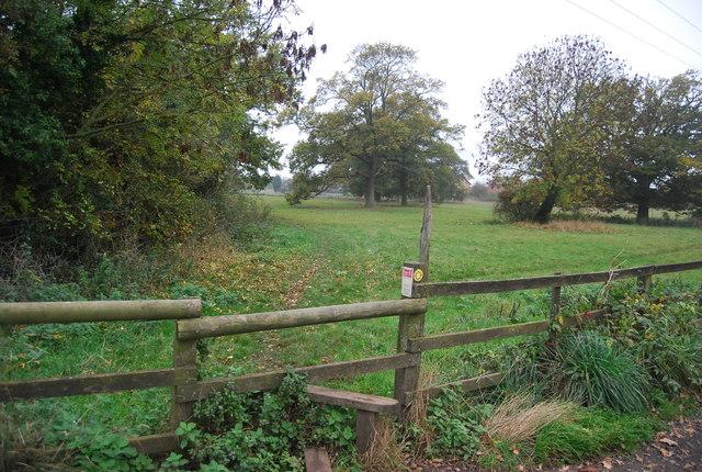 Footpath to Herne