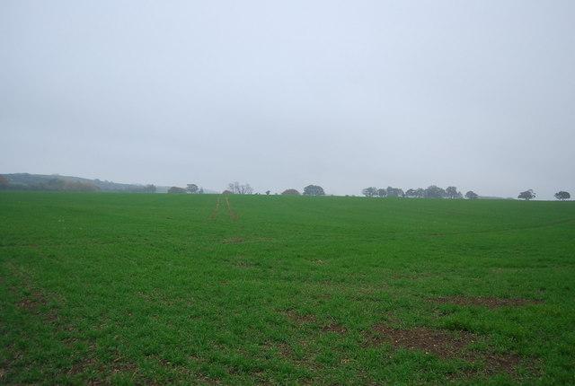 Farmland, Hawe Farm