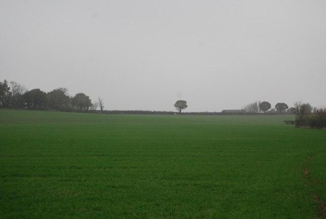 Farmland on the edge of Herne