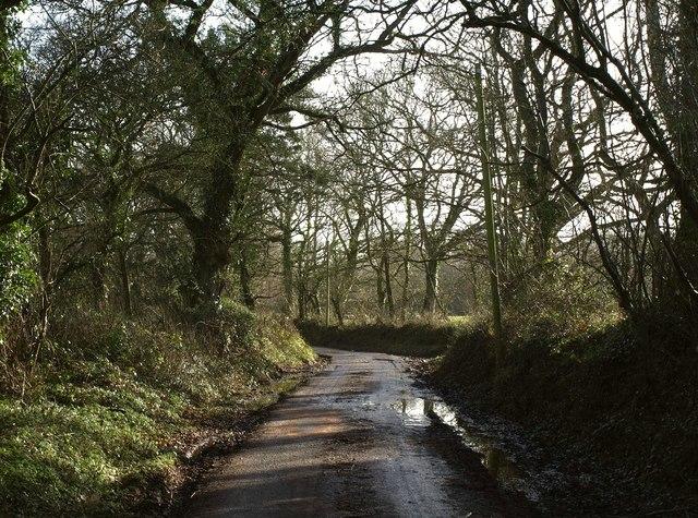 Lane, Greenslade
