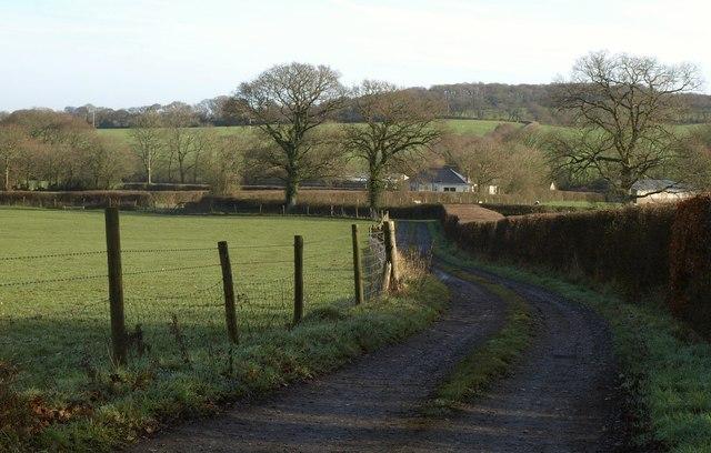 Farm track to Falcadon