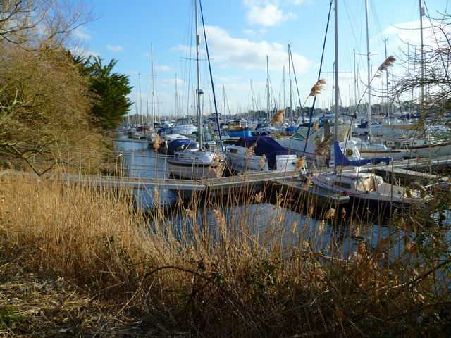 Corner of marina near Salterns Copse