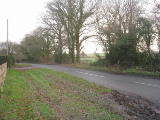 Lane by Dummer Grange Farm