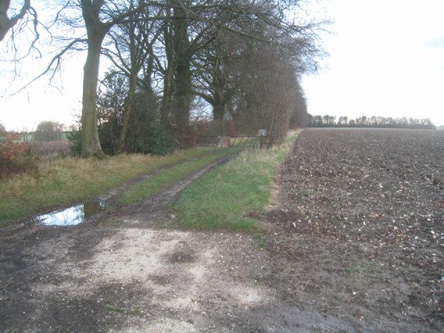 Track off the Wayfarer's Way