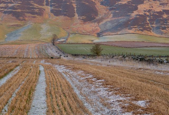 Hillside and farmland