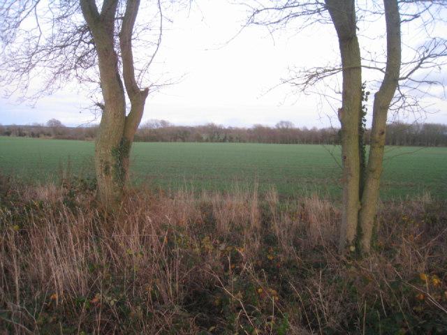 View from Wayfarer's Walk