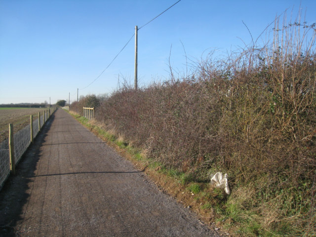 Sunshine on the new cycleway