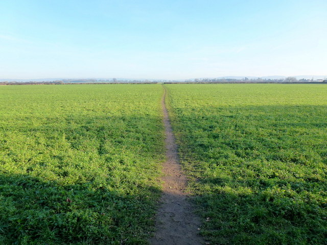 Footpath on the Severn floodplain