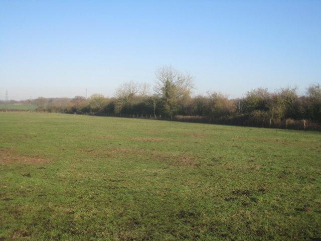 Field near Poland Mill