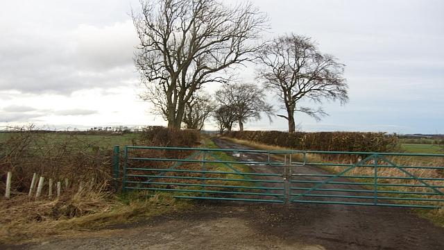 Road, Berrington Lough