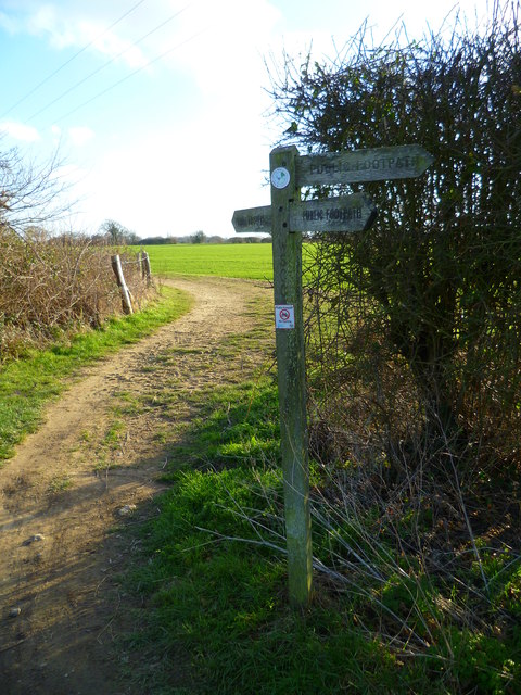 Path junction west of Westlands Farm