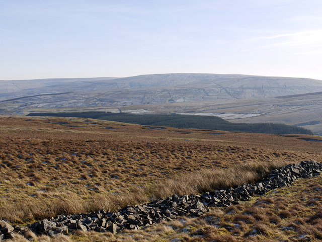 Ruined wall on moorland near Green Laws