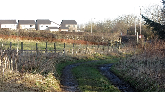 Farm track outside Kelso