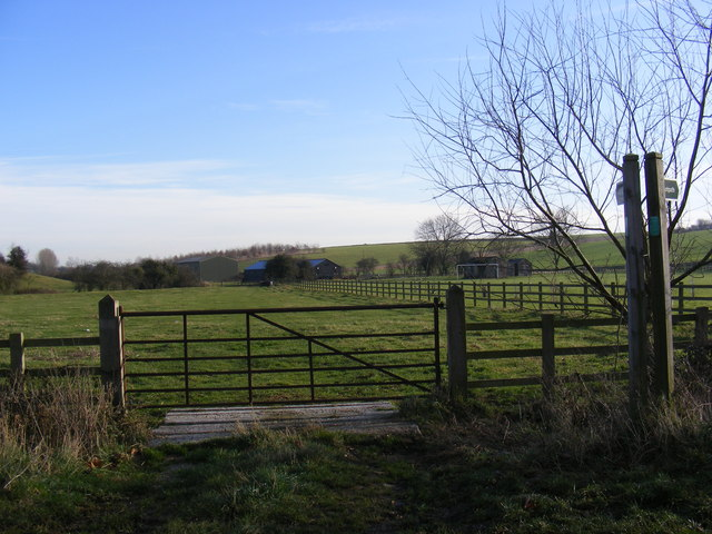 Footpath to Hollow Lane