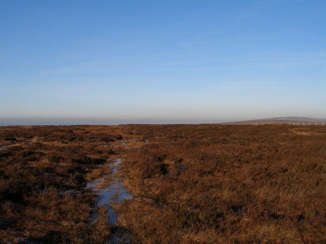 Black Hameldon - northern summit!