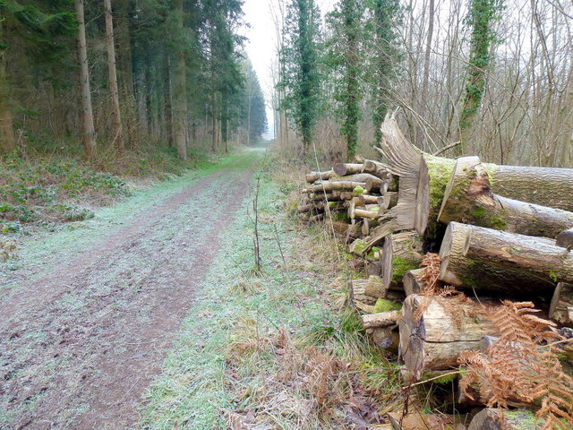 Herefordshire Trail 1