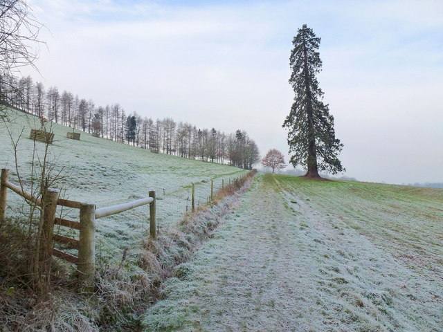 Herefordshire Trail - heading west
