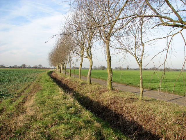Ditch beside the road past Moat Farm