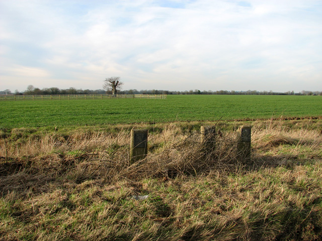 Fields by Caterpole Corner