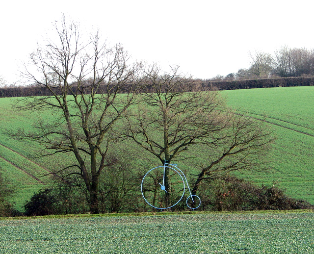 A Penny Farthing in fields near Okenhill Hall