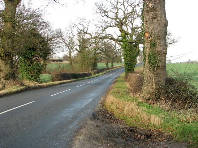 The B1120 road south of Fisk's Farm