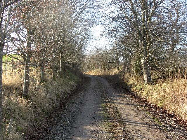 Jedburgh Railway trackbed